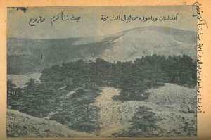 youssef-karam-3--3